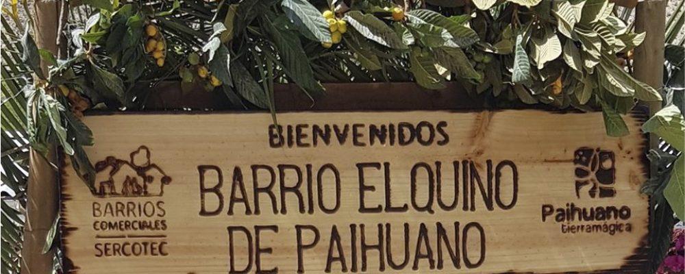 Lanzamiento Barrio Elquino de Paihuano